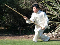 tai chi pole form