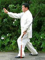tai chi sword form